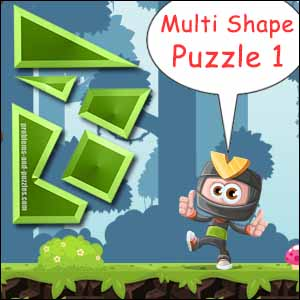 Multi shape puzzle